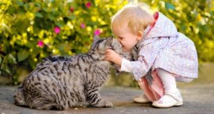 Здорові домашні тварини – здорові діти